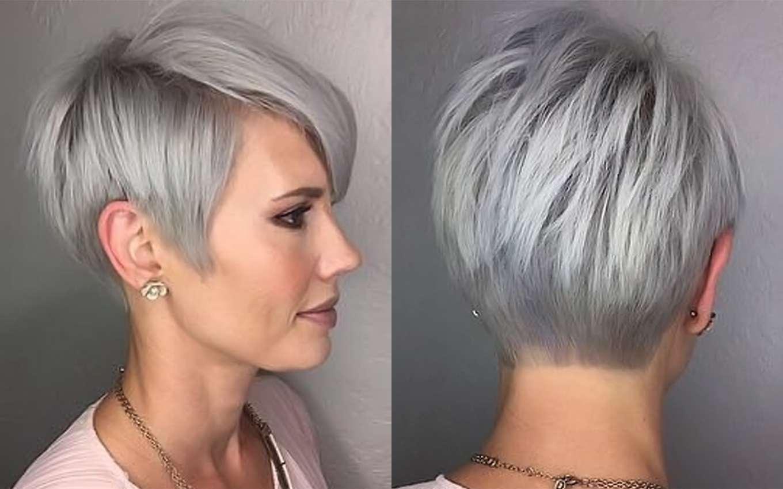Short Hairstyle Grey Hair